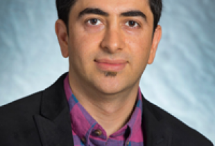 M. Hassan Najafi